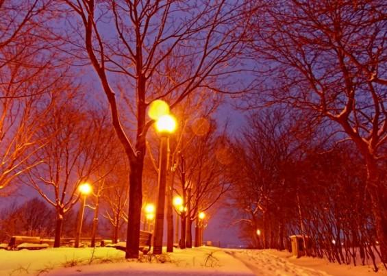 Snowfall by Nicky Jameson