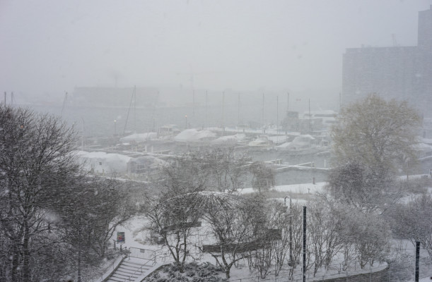 Toronto Harbourfront in Winter