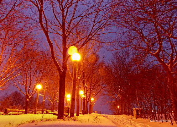 Snowfall - Toronto Night Photography
