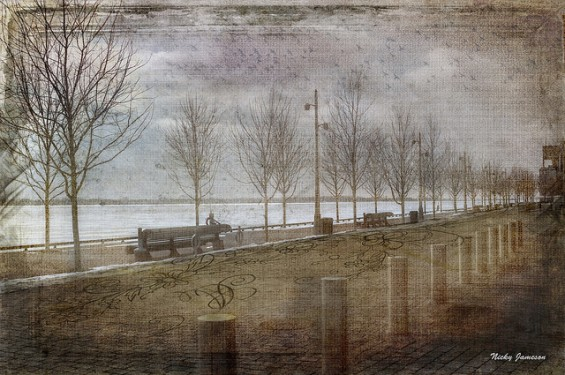 Toronto Landscape Artistry, Winter's Edge by Nicky Jameson