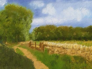 Cotswold's Walk, with traditional stone wall
